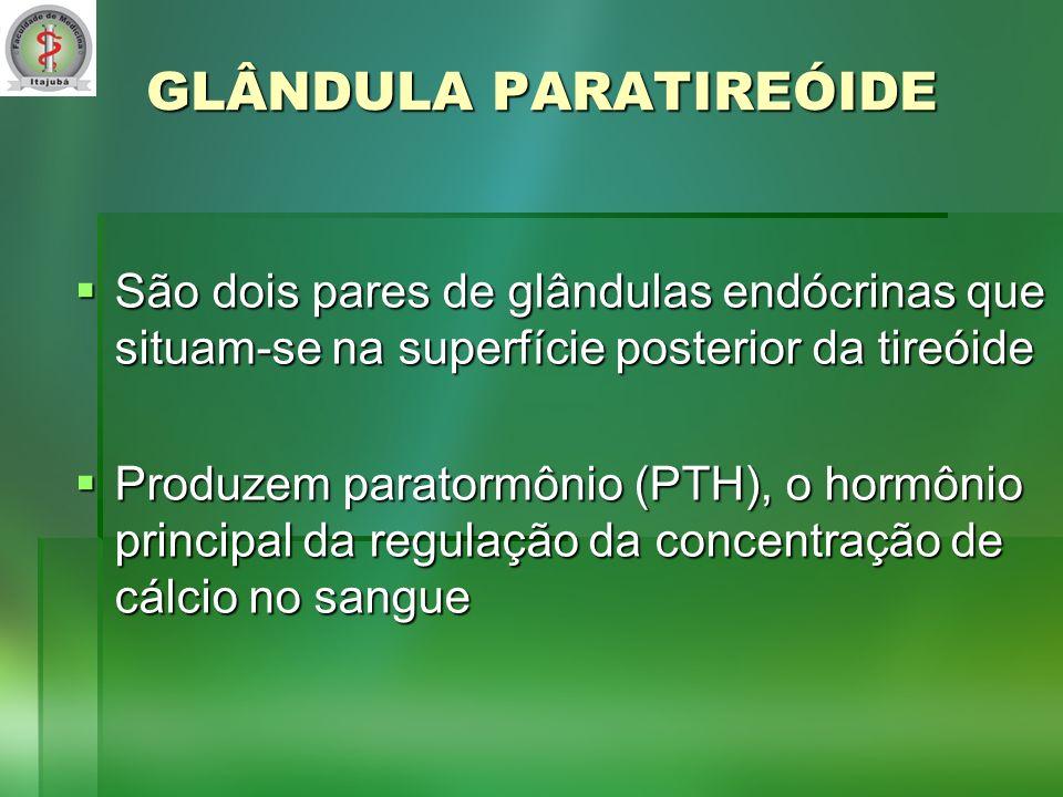GLÂNDULA PARATIREÓIDE São dois pares de glândulas endócrinas que situam-se na superfície posterior da tireóide São dois pares de glândulas endócrinas que situam-se na superfície posterior da tireóide Produzem paratormônio (PTH), o hormônio principal da regulação da concentração de cálcio no sangue Produzem paratormônio (PTH), o hormônio principal da regulação da concentração de cálcio no sangue