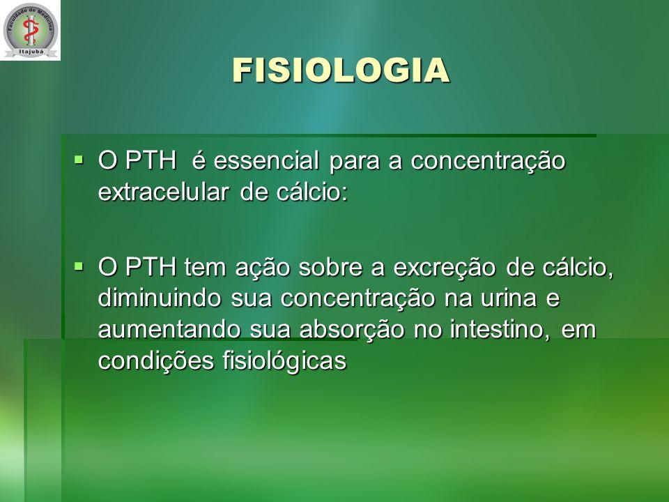 FISIOLOGIA O PTH é essencial para a concentração extracelular de cálcio: O PTH é essencial para a concentração extracelular de cálcio: O PTH tem ação sobre a excreção de cálcio, diminuindo sua concentração na urina e aumentando sua absorção no intestino, em condições fisiológicas O PTH tem ação sobre a excreção de cálcio, diminuindo sua concentração na urina e aumentando sua absorção no intestino, em condições fisiológicas
