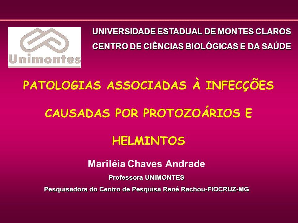 Classificação das Parasitoses Protozooses Protozooses Helmintoses Helmintoses Entomozooses Entomozooses