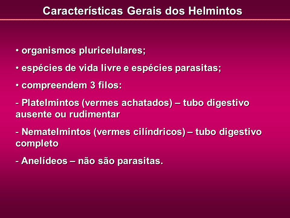 Características Gerais dos Helmintos organismos pluricelulares; organismos pluricelulares; espécies de vida livre e espécies parasitas; espécies de vi