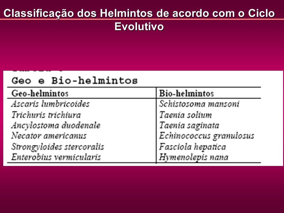 Classificação dos Helmintos de acordo com o Ciclo Evolutivo