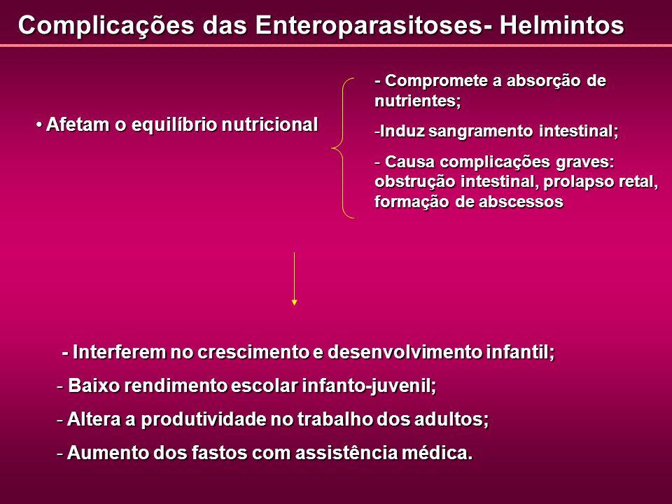 Complicações das Enteroparasitoses- Helmintos Afetam o equilíbrio nutricional Afetam o equilíbrio nutricional - Compromete a absorção de nutrientes; -