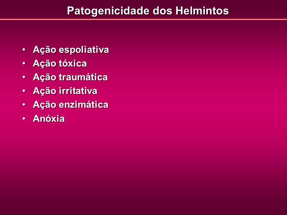 Patogenicidade dos Helmintos Ação espoliativaAção espoliativa Ação tóxicaAção tóxica Ação traumáticaAção traumática Ação irritativaAção irritativa Açã