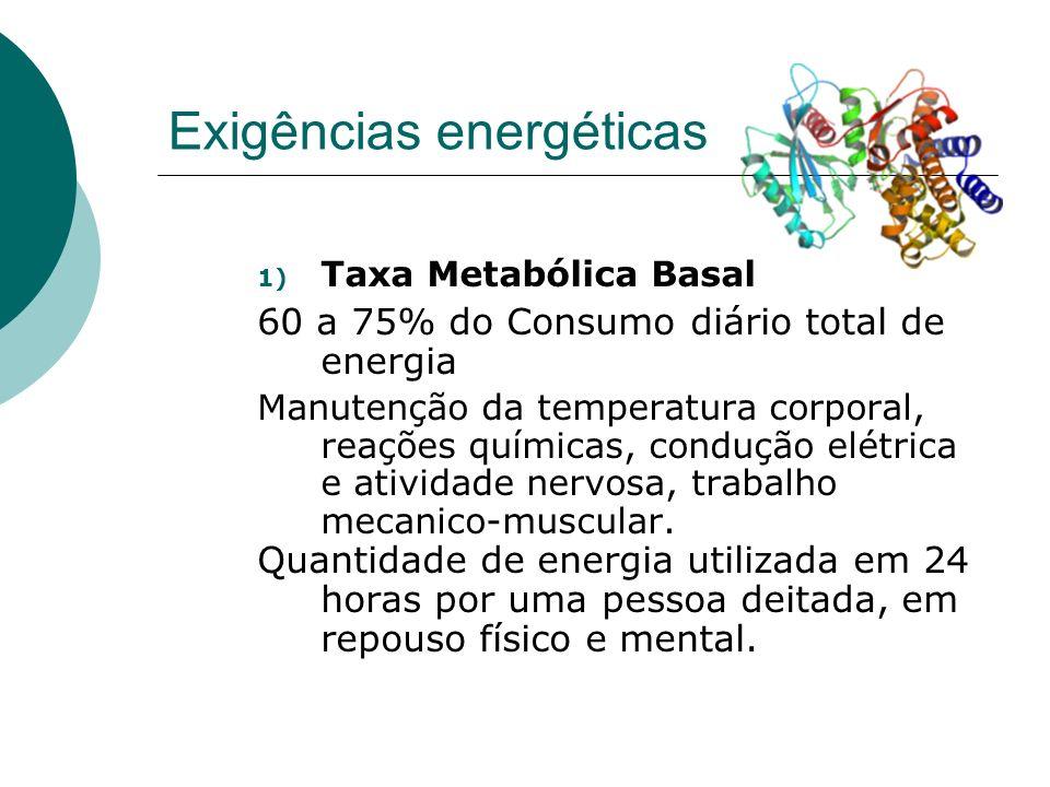 Exigências energéticas 1) Taxa Metabólica Basal 60 a 75% do Consumo diário total de energia Manutenção da temperatura corporal, reações químicas, cond