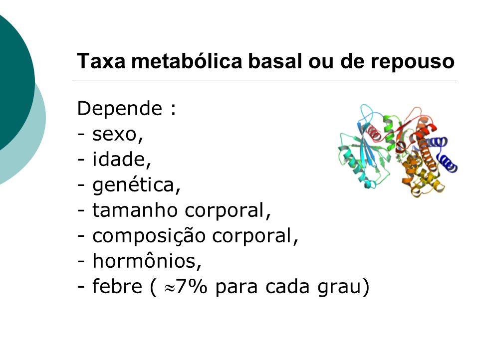Taxa metabólica basal ou de repouso Depende : - sexo, - idade, - genética, - tamanho corporal, - composição corporal, - hormônios, - febre ( 7% para c
