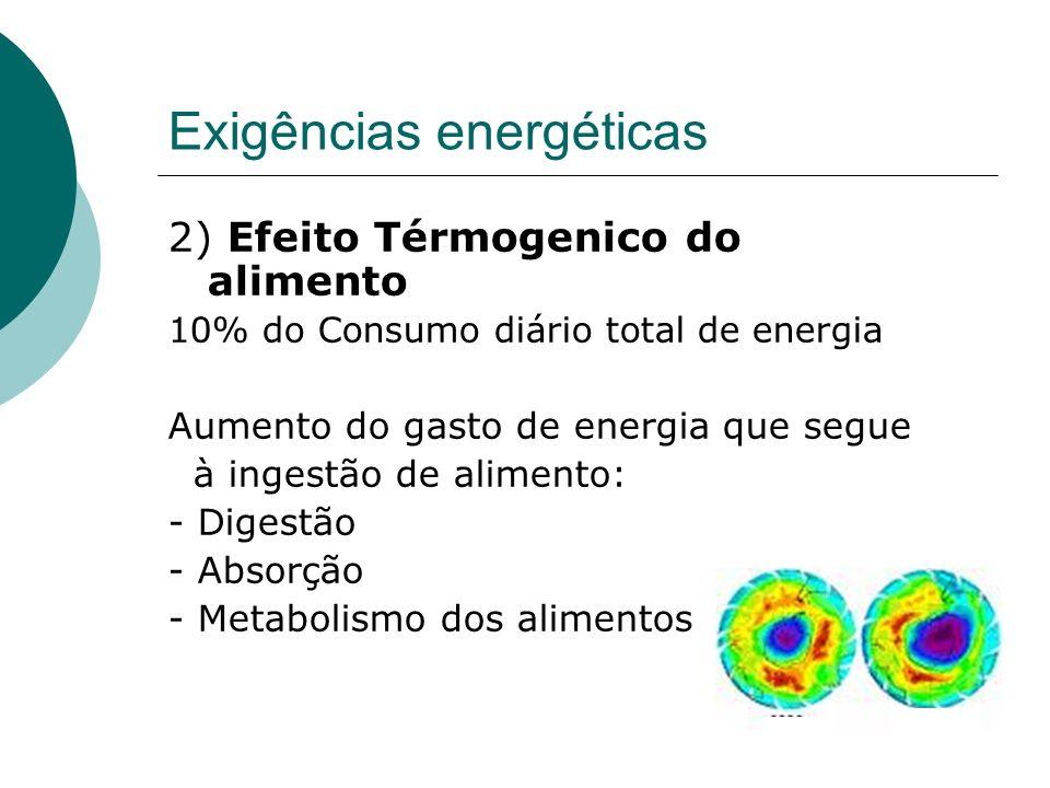 Exigências energéticas 2) Efeito Térmogenico do alimento 10% do Consumo diário total de energia Aumento do gasto de energia que segue à ingestão de al
