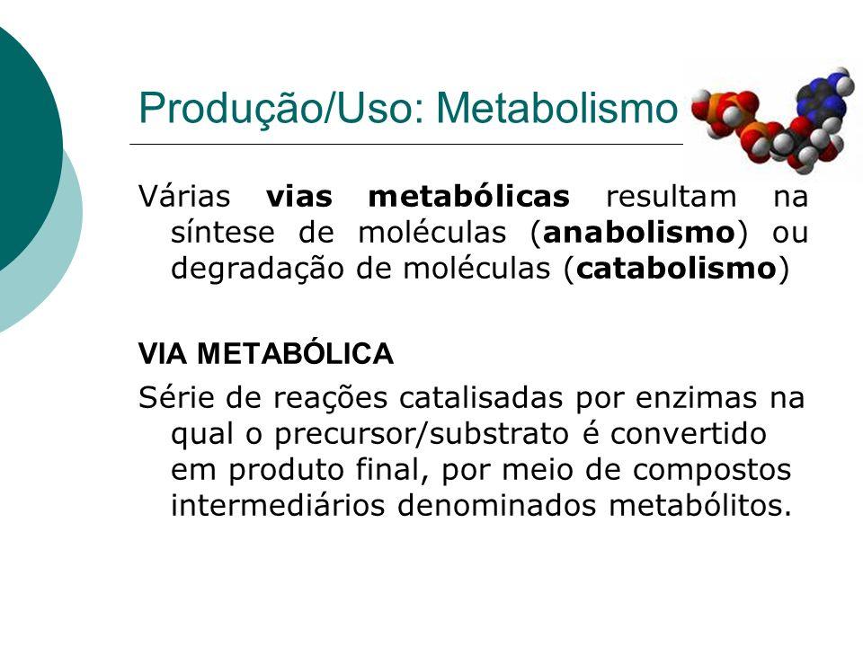 Produção/Uso: Metabolismo Várias vias metabólicas resultam na síntese de moléculas (anabolismo) ou degradação de moléculas (catabolismo) VIA METABÓLIC