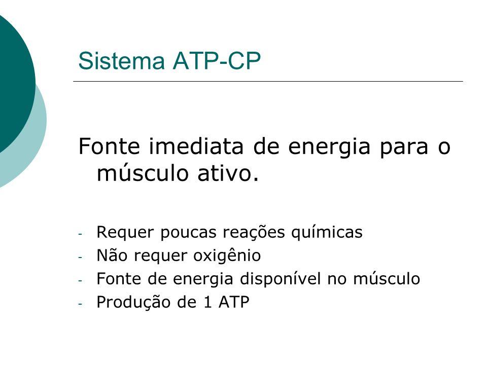 Sistema ATP-CP Fonte imediata de energia para o músculo ativo. - Requer poucas reações químicas - Não requer oxigênio - Fonte de energia disponível no