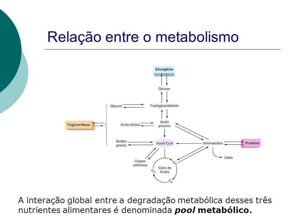Relação entre o metabolismo A interação global entre a degradação metabólica desses três nutrientes alimentares é denominada pool metabólico.