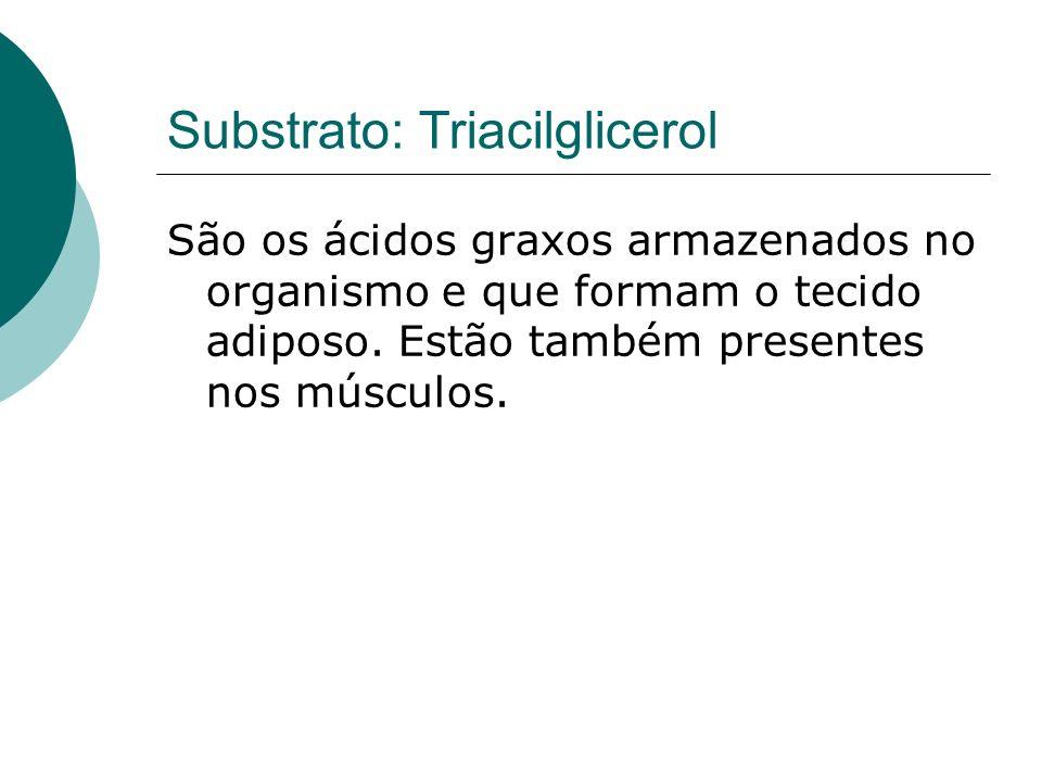 Substrato: Triacilglicerol São os ácidos graxos armazenados no organismo e que formam o tecido adiposo. Estão também presentes nos músculos.