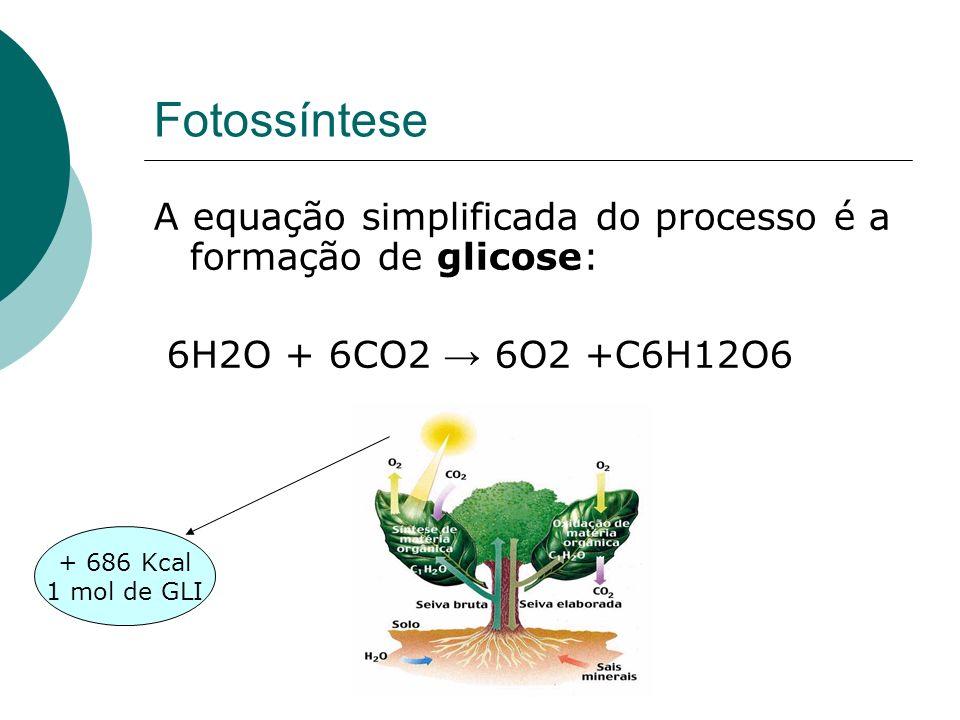 Fotossíntese A equação simplificada do processo é a formação de glicose: 6H2O + 6CO2 6O2 +C6H12O6 + 686 Kcal 1 mol de GLI