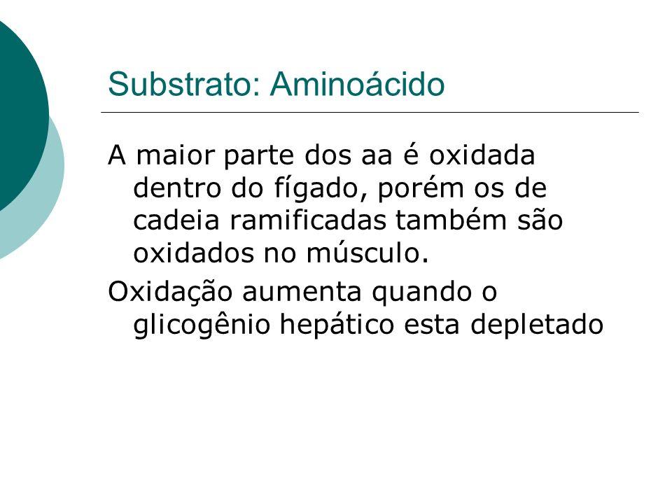 Substrato: Aminoácido A maior parte dos aa é oxidada dentro do fígado, porém os de cadeia ramificadas também são oxidados no músculo. Oxidação aumenta