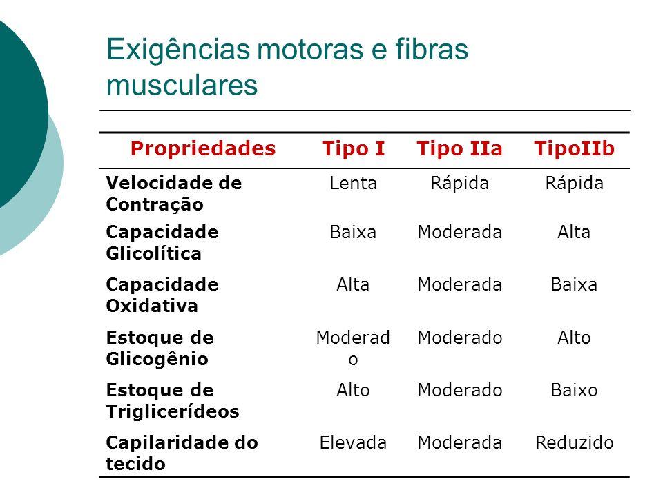 Exigências motoras e fibras musculares PropriedadesTipo ITipo IIaTipoIIb Velocidade de Contração LentaRápida Capacidade Glicolítica BaixaModeradaAlta