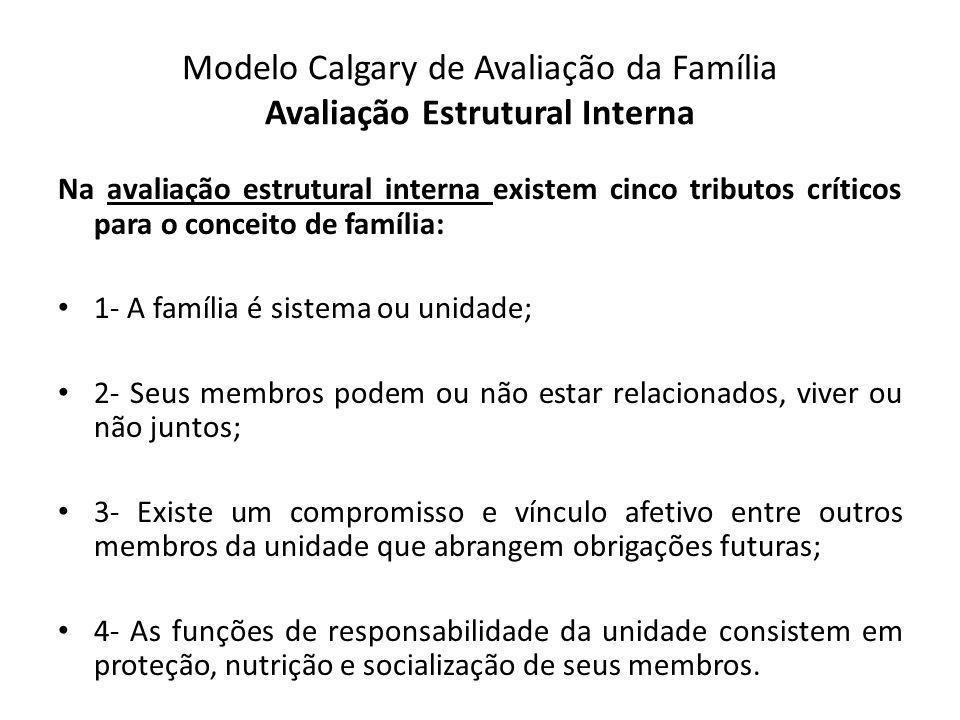 Modelo Calgary de Avaliação da Família Avaliação Estrutural Interna Na avaliação estrutural interna existem cinco tributos críticos para o conceito de