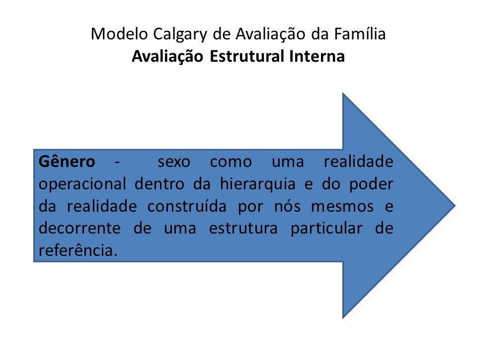 Modelo Calgary de Avaliação da Família Avaliação Estrutural Interna Gênero - sexo como uma realidade operacional dentro da hierarquia e do poder da re