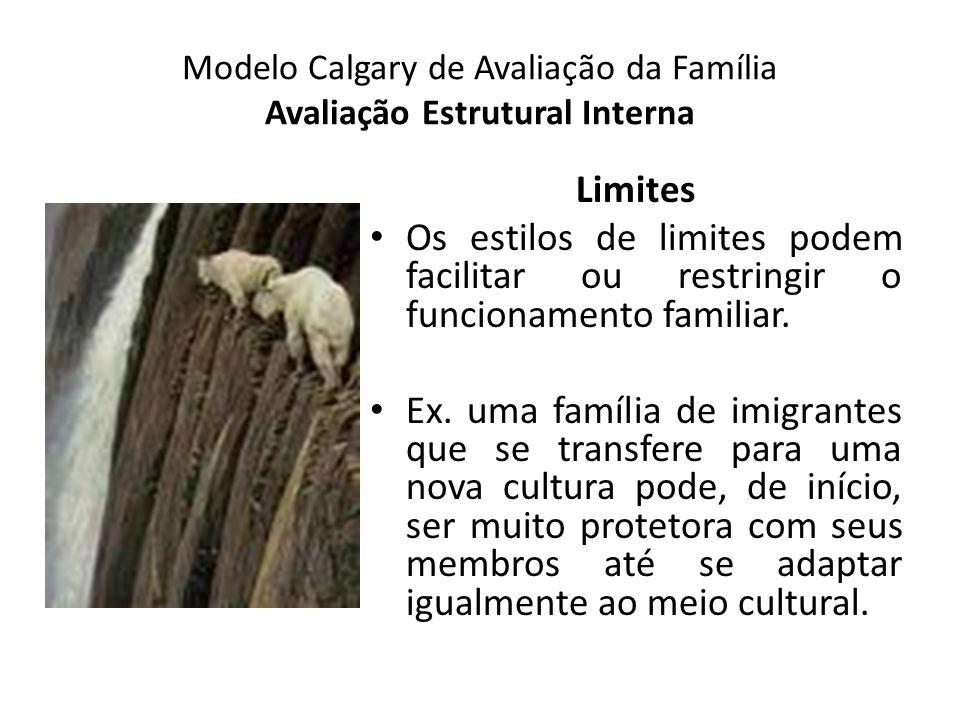 Modelo Calgary de Avaliação da Família Avaliação Estrutural Interna Limites Os estilos de limites podem facilitar ou restringir o funcionamento famili