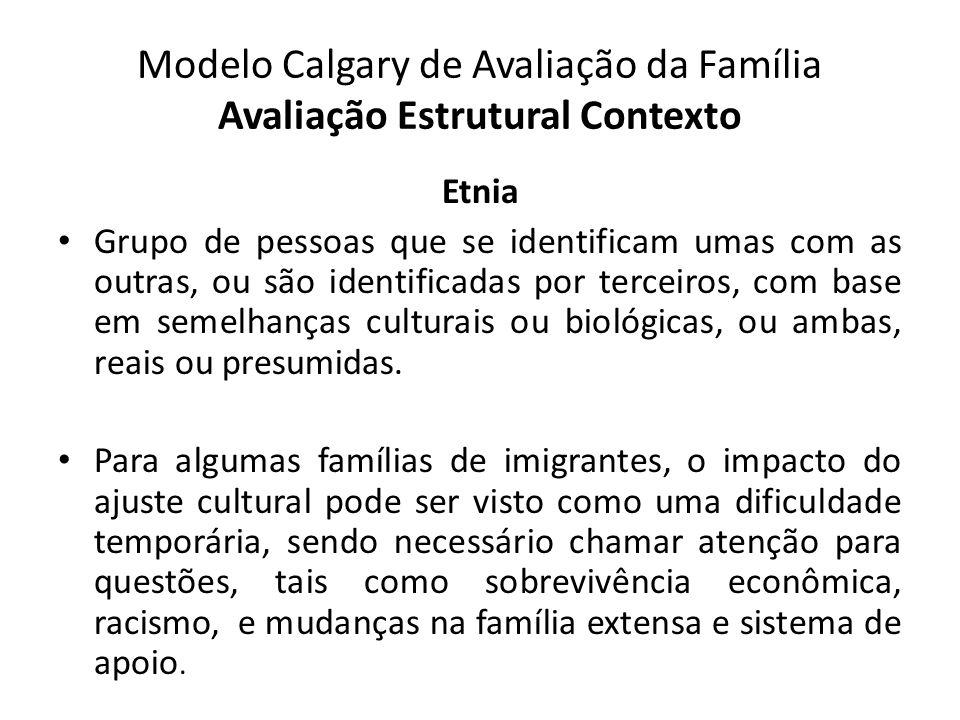 Modelo Calgary de Avaliação da Família Avaliação Estrutural Contexto Etnia Grupo de pessoas que se identificam umas com as outras, ou são identificada