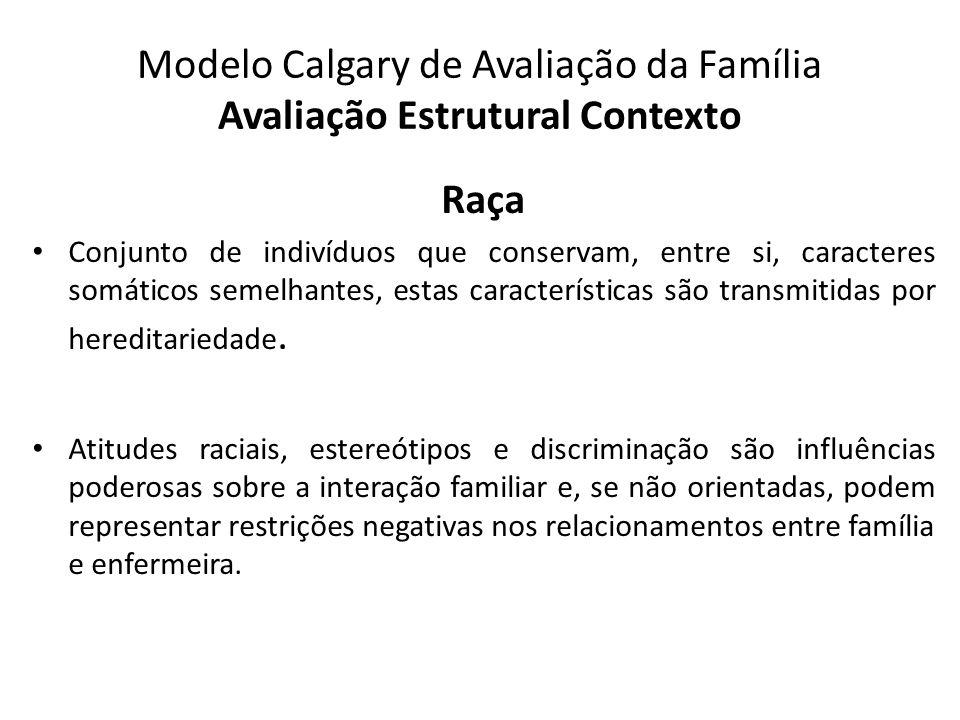 Modelo Calgary de Avaliação da Família Avaliação Estrutural Contexto Raça Conjunto de indivíduos que conservam, entre si, caracteres somáticos semelha