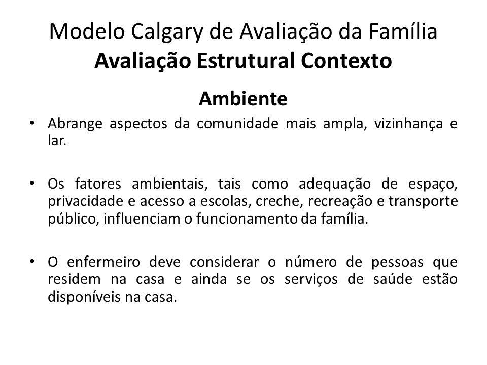 Modelo Calgary de Avaliação da Família Avaliação Estrutural Contexto Ambiente Abrange aspectos da comunidade mais ampla, vizinhança e lar. Os fatores