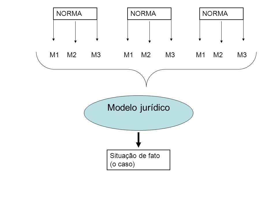 Situação de fato (o caso) NORMA M1M2M3 NORMA M1M2M3 NORMA M1M2M3 Modelo jurídico