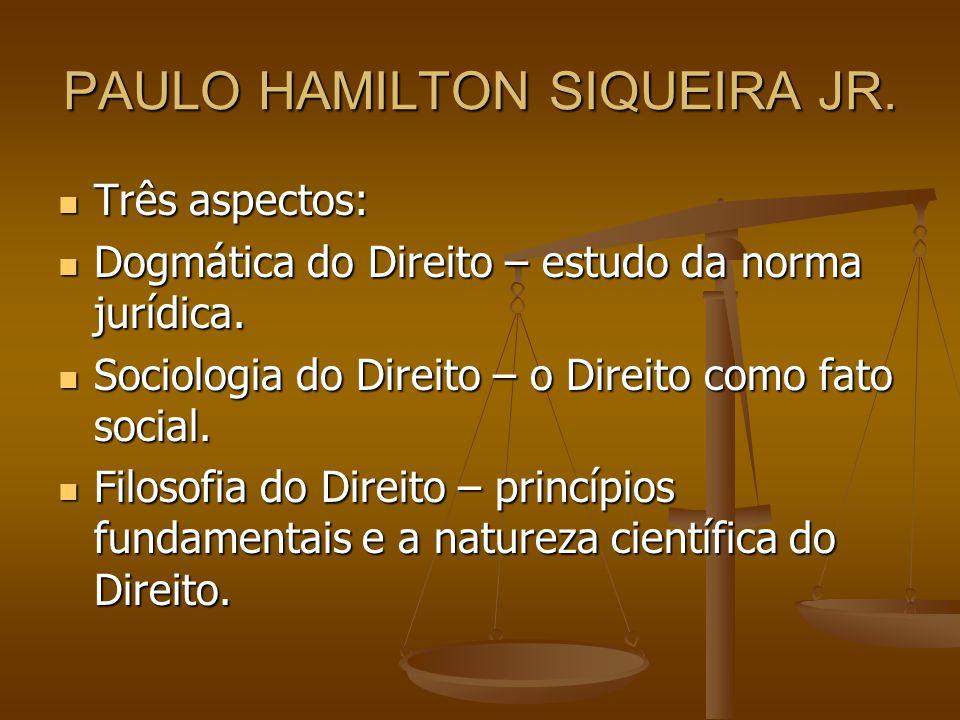 PAULO HAMILTON SIQUEIRA JR. Três aspectos: Três aspectos: Dogmática do Direito – estudo da norma jurídica. Dogmática do Direito – estudo da norma jurí