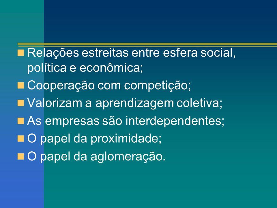 Relações estreitas entre esfera social, política e econômica; Cooperação com competição; Valorizam a aprendizagem coletiva; As empresas são interdepen