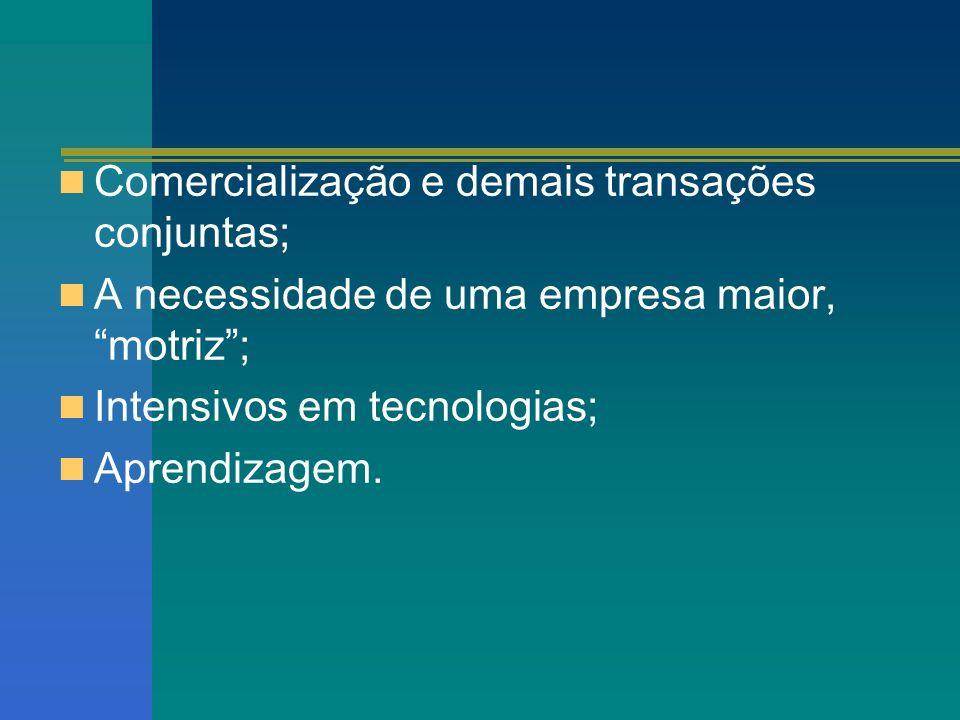 Comercialização e demais transações conjuntas; A necessidade de uma empresa maior, motriz; Intensivos em tecnologias; Aprendizagem.