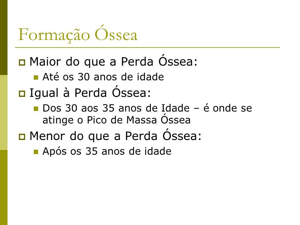 Formação Óssea Maior do que a Perda Óssea: Até os 30 anos de idade Igual à Perda Óssea: Dos 30 aos 35 anos de Idade – é onde se atinge o Pico de Massa