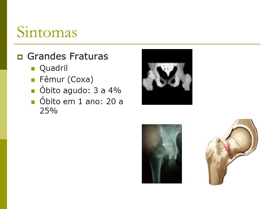 Sintomas Grandes Fraturas Quadril Fêmur (Coxa) Óbito agudo: 3 a 4% Óbito em 1 ano: 20 a 25%
