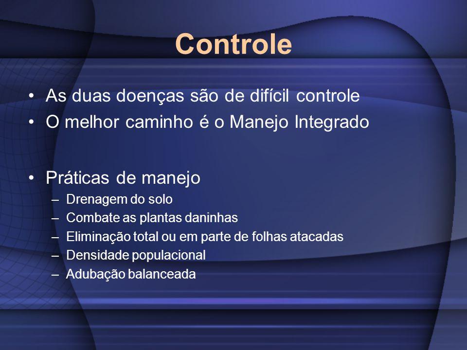 Controle As duas doenças são de difícil controle O melhor caminho é o Manejo Integrado Práticas de manejo –Drenagem do solo –Combate as plantas daninh