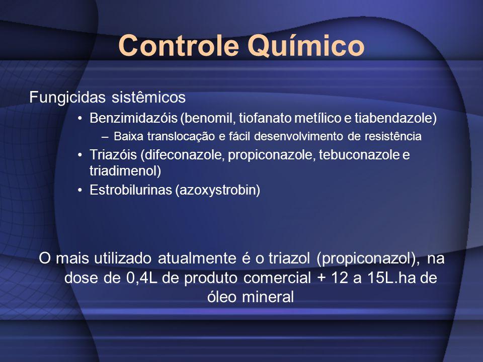 Controle Químico Fungicidas sistêmicos Benzimidazóis (benomil, tiofanato metílico e tiabendazole) –Baixa translocação e fácil desenvolvimento de resis
