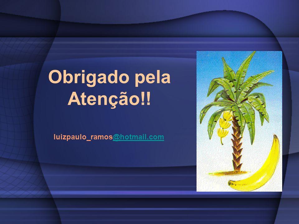 Obrigado pela Atenção!! luizpaulo_ramos@hotmail.com@hotmail.com