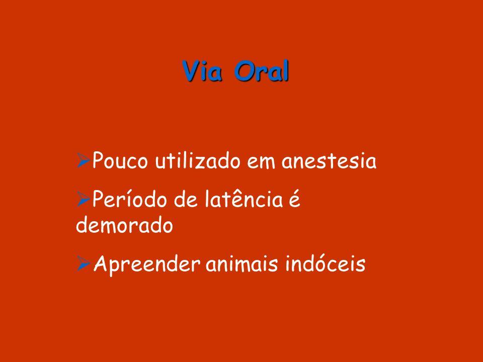 Via Oral Pouco utilizado em anestesia Período de latência é demorado Apreender animais indóceis