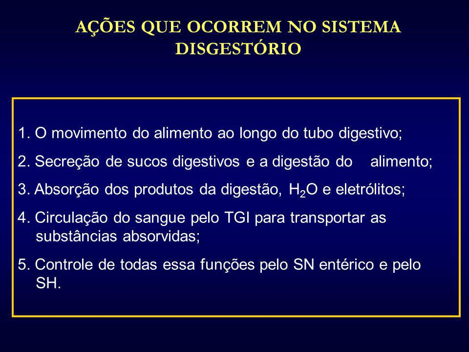 1. O movimento do alimento ao longo do tubo digestivo; 2. Secreção de sucos digestivos e a digestão do alimento; 3. Absorção dos produtos da digestão,