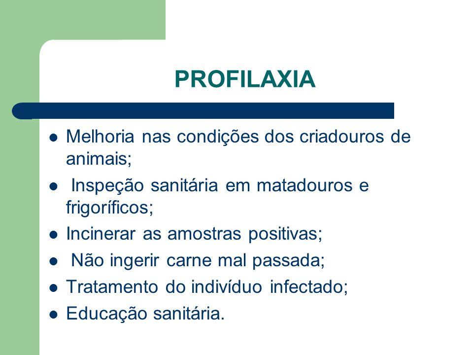 PROFILAXIA Melhoria nas condições dos criadouros de animais; Inspeção sanitária em matadouros e frigoríficos; Incinerar as amostras positivas; Não ing