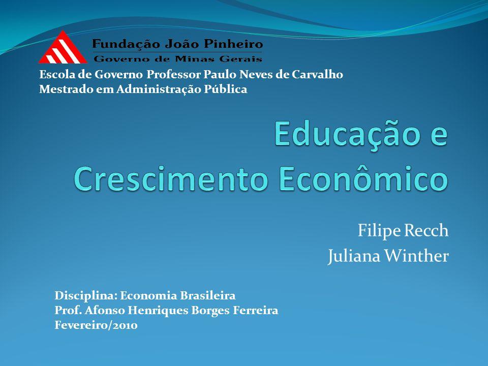 Filipe Recch Juliana Winther Disciplina: Economia Brasileira Prof. Afonso Henriques Borges Ferreira Fevereiro/2010 Escola de Governo Professor Paulo N