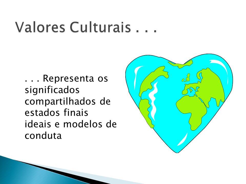 ... Representa os significados compartilhados de estados finais ideais e modelos de conduta