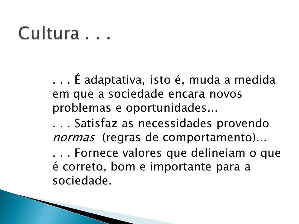 ... É adaptativa, isto é, muda a medida em que a sociedade encara novos problemas e oportunidades...... Satisfaz as necessidades provendo normas (regr