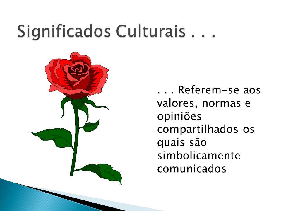 ... Referem-se aos valores, normas e opiniões compartilhados os quais são simbolicamente comunicados
