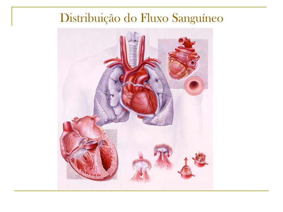 Pressão(P) Volume(V) Secção Transversa(A) Resistência(R) Distribuição Sanguínea (V)