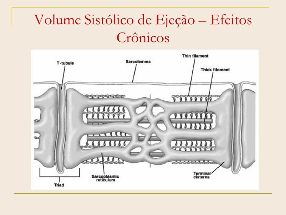 Efeitos Crônicos do Exercício Remodelamento Miocárdico Reverso; Aumento da Fração de Ejeção; Diminuição da Resistência Periférica Total; Diminuição dos níveis tensóricos Sistólicos e Diastólicos; Aumento da perfusão tecidual (densidade capilar).