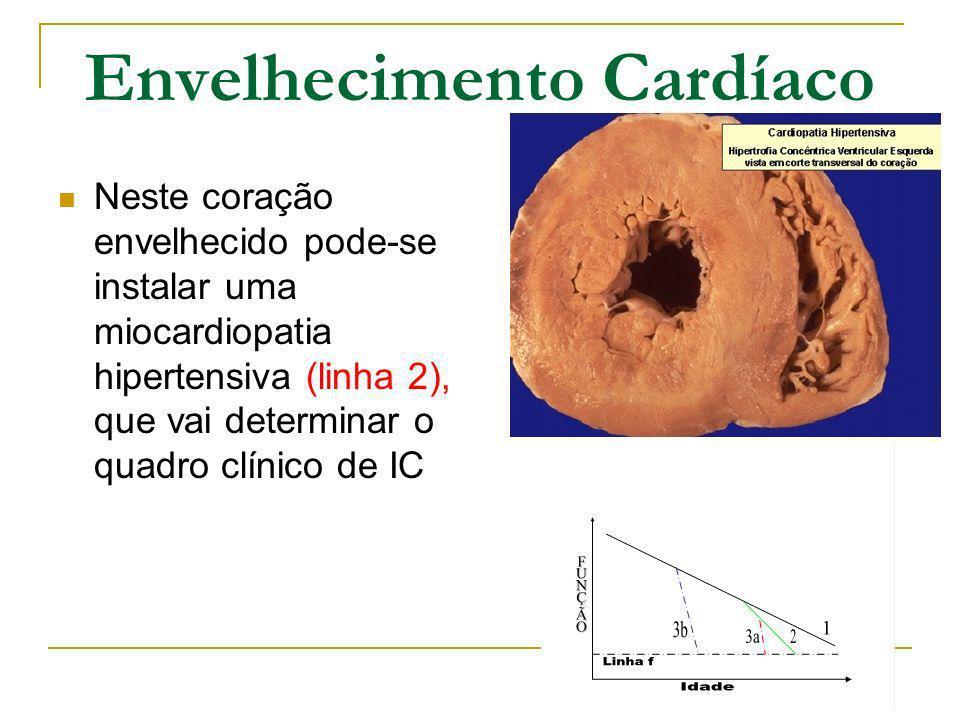 Envelhecimento Cardíaco Neste coração envelhecido pode-se instalar uma miocardiopatia hipertensiva (linha 2), que vai determinar o quadro clínico de I