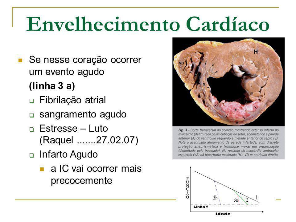 Envelhecimento Cardíaco Se nesse coração ocorrer um evento agudo (linha 3 a) Fibrilação atrial sangramento agudo Estresse – Luto (Raquel.......27.02.0
