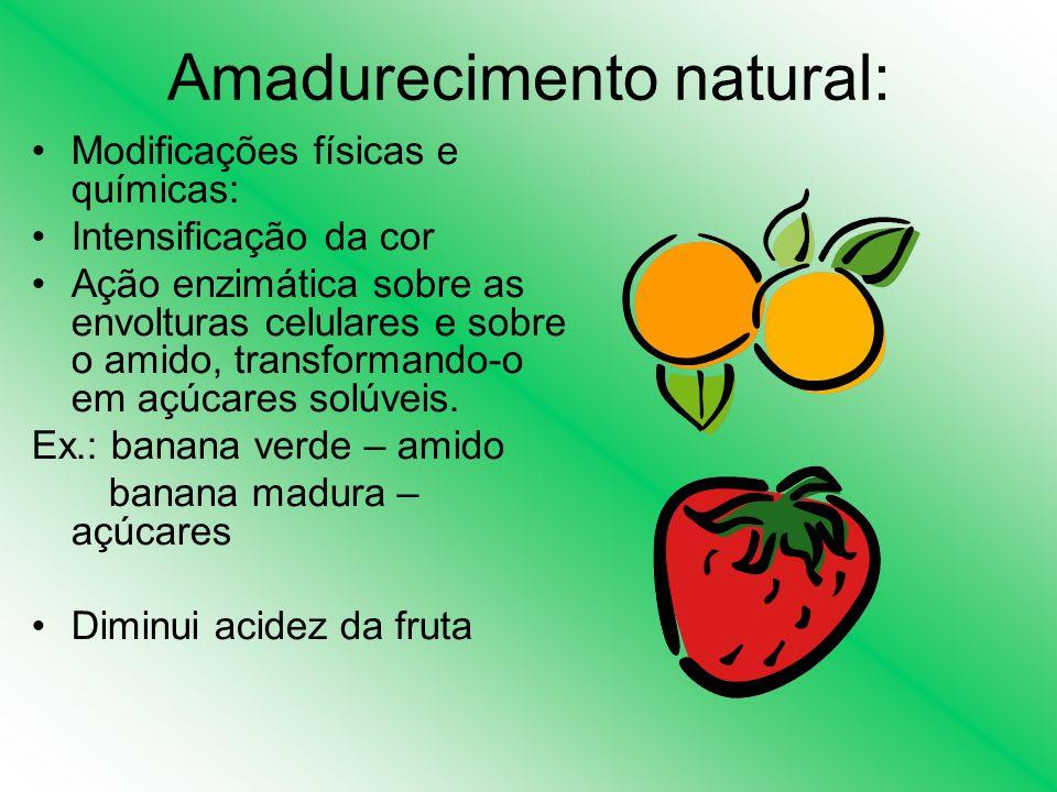 Amadurecimento natural: Modificações físicas e químicas: Intensificação da cor Ação enzimática sobre as envolturas celulares e sobre o amido, transfor