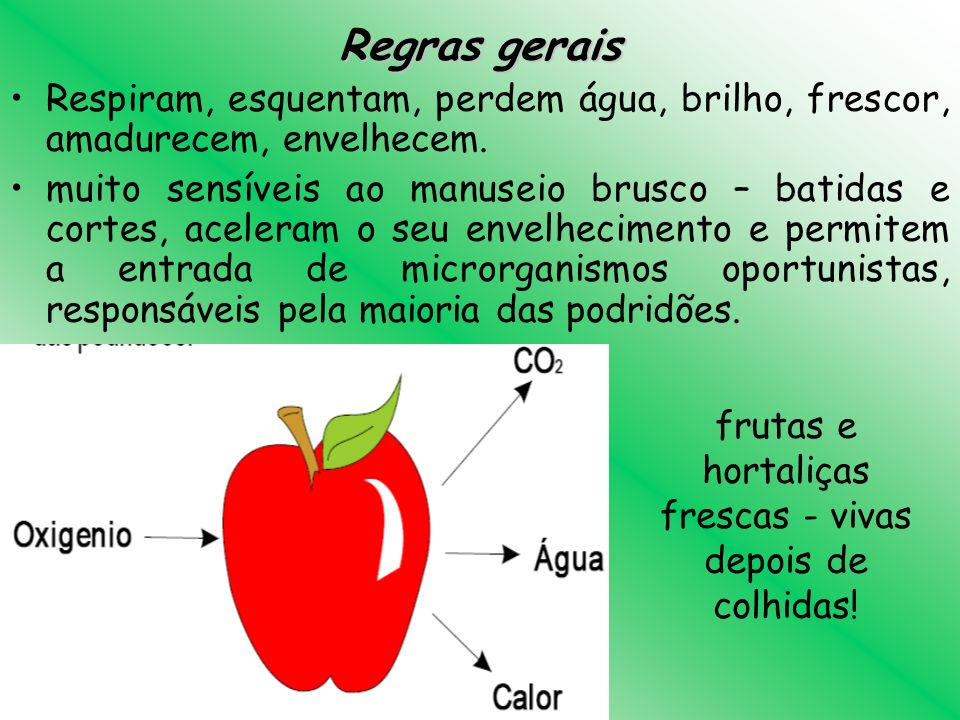 Fruta colorida é fruta mais doce.