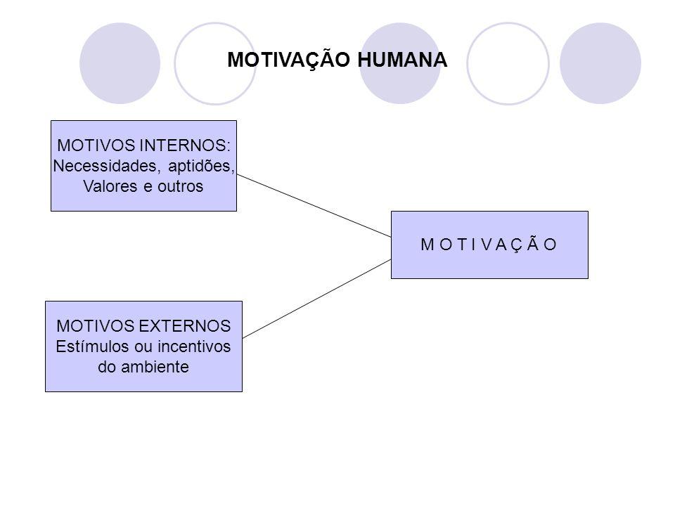 MOTIVAÇÃO HUMANA MOTIVOS INTERNOS: Necessidades, aptidões, Valores e outros MOTIVOS EXTERNOS Estímulos ou incentivos do ambiente M O T I V A Ç Ã O