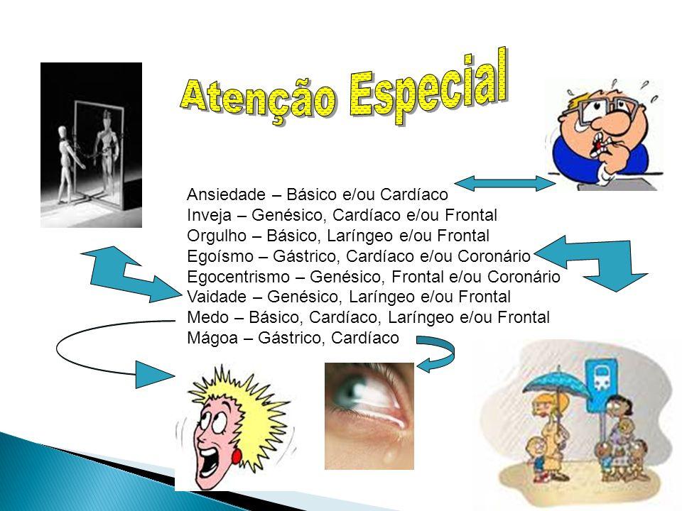 27 Ansiedade – Básico e/ou Cardíaco Inveja – Genésico, Cardíaco e/ou Frontal Orgulho – Básico, Laríngeo e/ou Frontal Egoísmo – Gástrico, Cardíaco e/ou