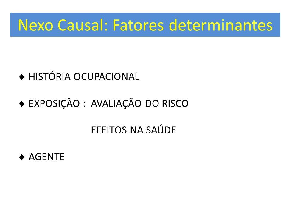 Nexo Causal: Fatores determinantes HISTÓRIA OCUPACIONAL EXPOSIÇÃO : AVALIAÇÃO DO RISCO EFEITOS NA SAÚDE AGENTE