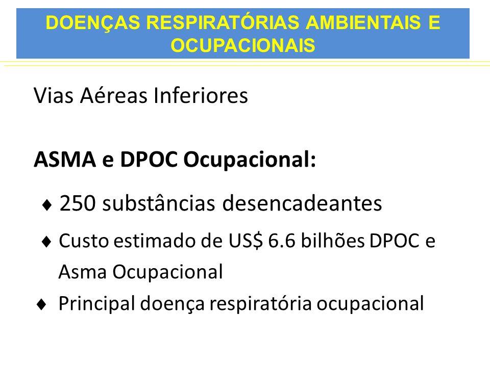 Vias Aéreas Inferiores ASMA e DPOC Ocupacional: 250 substâncias desencadeantes Custo estimado de US$ 6.6 bilhões DPOC e Asma Ocupacional Principal doe
