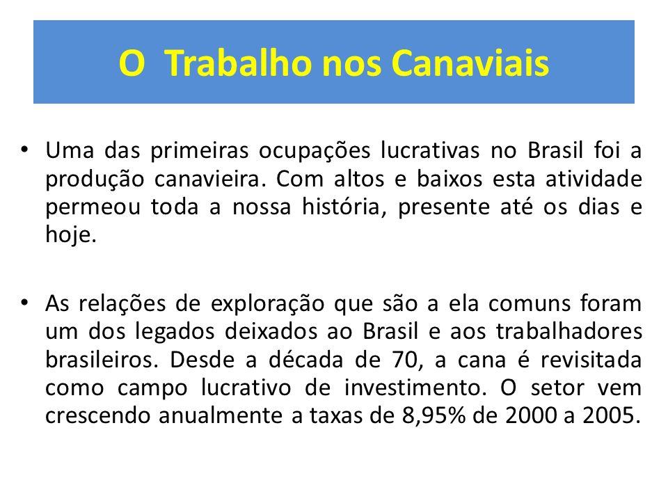 O Trabalho nos Canaviais Uma das primeiras ocupações lucrativas no Brasil foi a produção canavieira. Com altos e baixos esta atividade permeou toda a